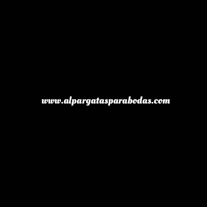 Imagen Mujer Estampadas Alpargata estampada FLOR AZUL Caja 36 pares (Últimas Unidades)